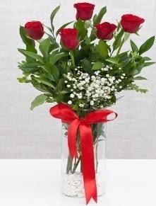 cam vazo içerisinde 5 adet kırmızı gül  Kütahya çiçek yolla