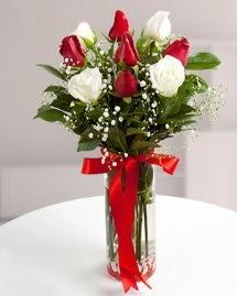 5 kırmızı 4 beyaz gül vazoda  Kütahya çiçek yolla