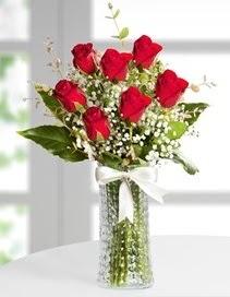 Cam vazoda 7 adet kırmızı gül  Kütahya hediye sevgilime hediye çiçek
