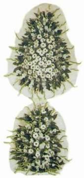 Kütahya yurtiçi ve yurtdışı çiçek siparişi  Model Sepetlerden Seçme 3