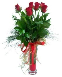 vazo içerisinde 5 kırmızı gül  Kütahya internetten çiçek satışı