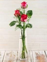 Cam içerisinde 3 kırmızı gül  Kütahya anneler günü çiçek yolla