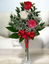 Camda 2 kırmızı 1 beyaz gül  Kütahya çiçek online çiçek siparişi