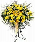 Kütahya çiçekçiler  Sari kazablanka Ferforje