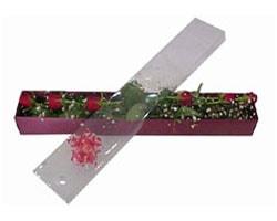 Kütahya çiçek satışı   6 adet kirmizi gül kutu içinde