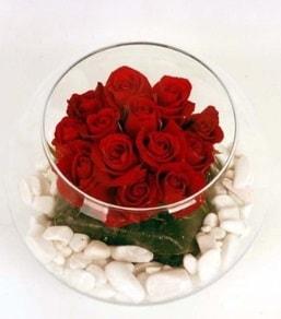 Cam fanusta 11 adet kırmızı gül  Kütahya uluslararası çiçek gönderme