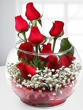 Kırmızı Mutluluk fanusta 9 kırmızı gül  Kütahya kaliteli taze ve ucuz çiçekler