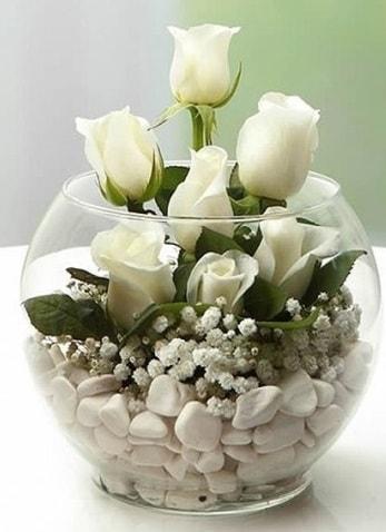 Beyaz Mutluluk 9 beyaz gül fanusta  Kütahya kaliteli taze ve ucuz çiçekler