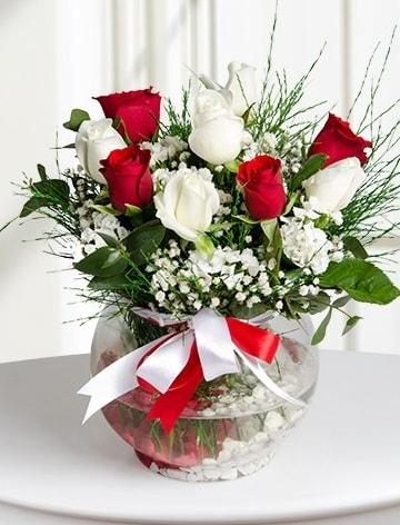 Aşk Küresi  5 beyaz 5 kırmızı gül fanusta  Kütahya güvenli kaliteli hızlı çiçek