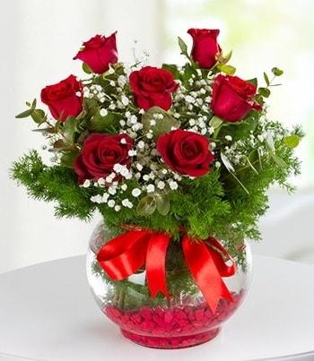 fanus Vazoda 7 Gül  Kütahya hediye sevgilime hediye çiçek