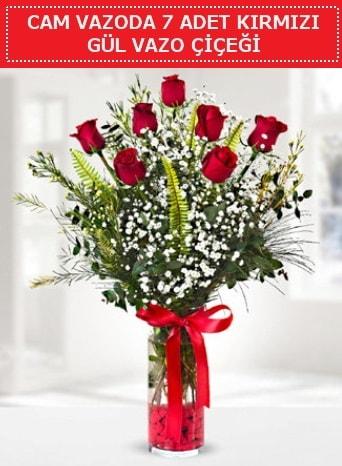 Cam vazoda 7 adet kırmızı gül çiçeği  Kütahya cicek , cicekci