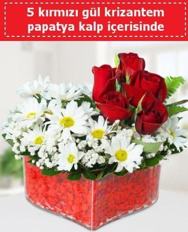 mika kalp içerisinde 5 kırmızı gül papatya  Kütahya uluslararası çiçek gönderme