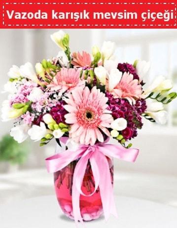 Vazoda karışık mevsim çiçeği  Kütahya hediye sevgilime hediye çiçek
