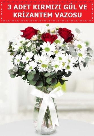 3 kırmızı gül ve camda krizantem çiçekleri  Kütahya uluslararası çiçek gönderme