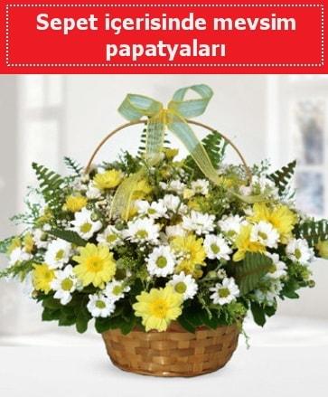 Sepet içerisinde mevsim papatyaları  Kütahya çiçek online çiçek siparişi