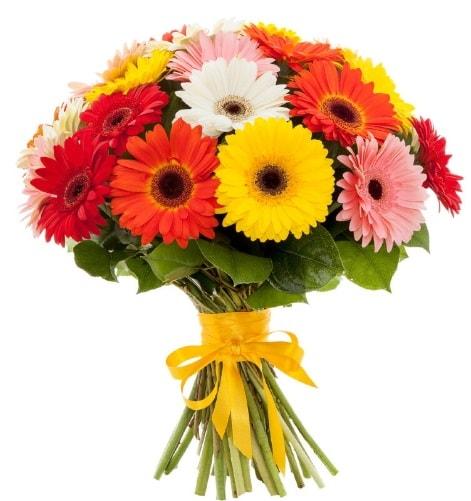 Gerbera demeti buketi  Kütahya anneler günü çiçek yolla